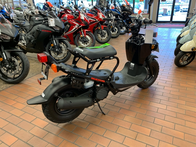 New 2019 Honda Ruckus Base