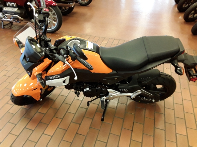 New 2019 Honda Grom in St  Louis #M18086 | Mungenast