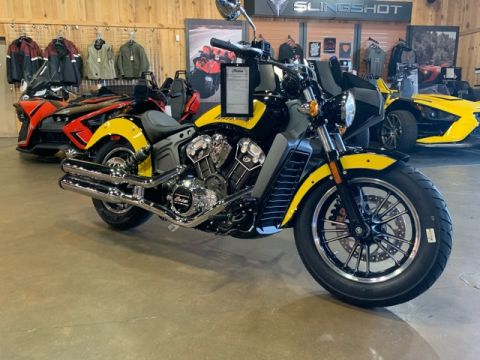 New 2019 Indian Scout ABS ICON SERIES Base